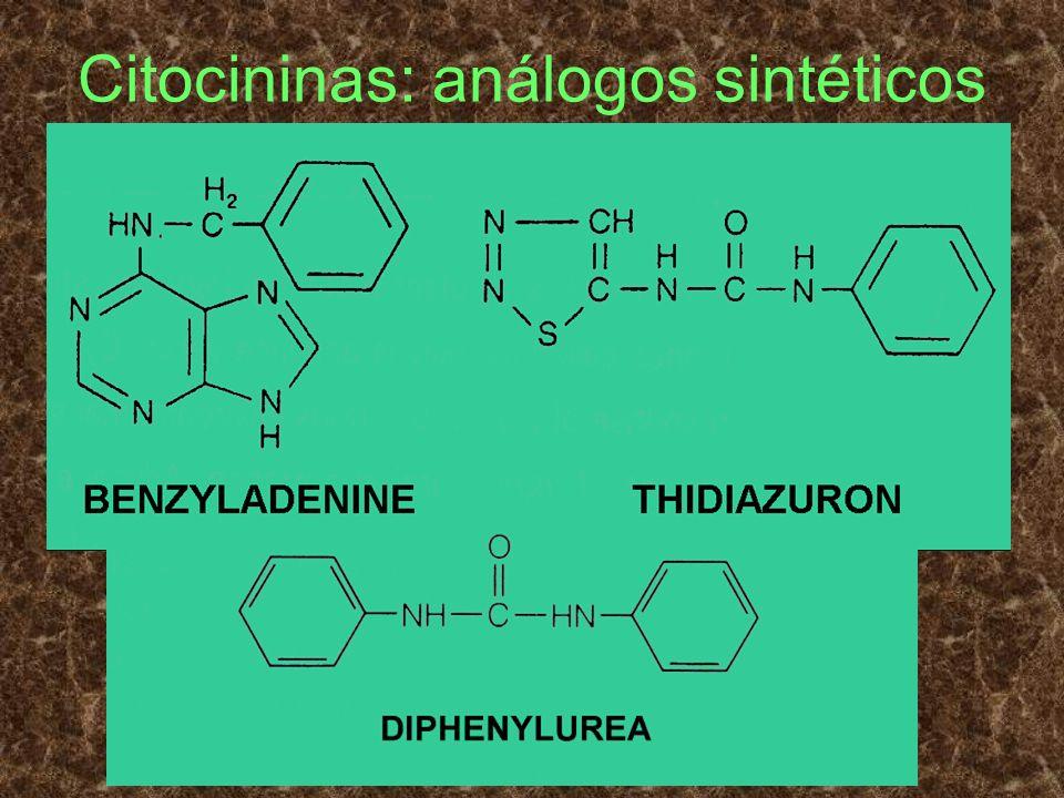 Citocininas: análogos sintéticos