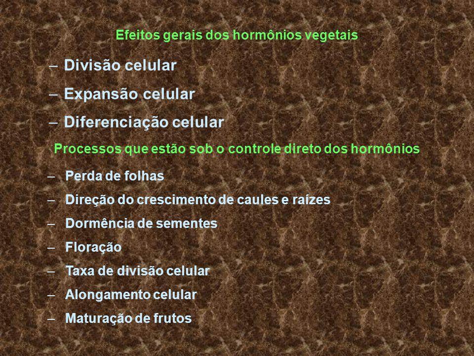 Efeitos gerais dos hormônios vegetais