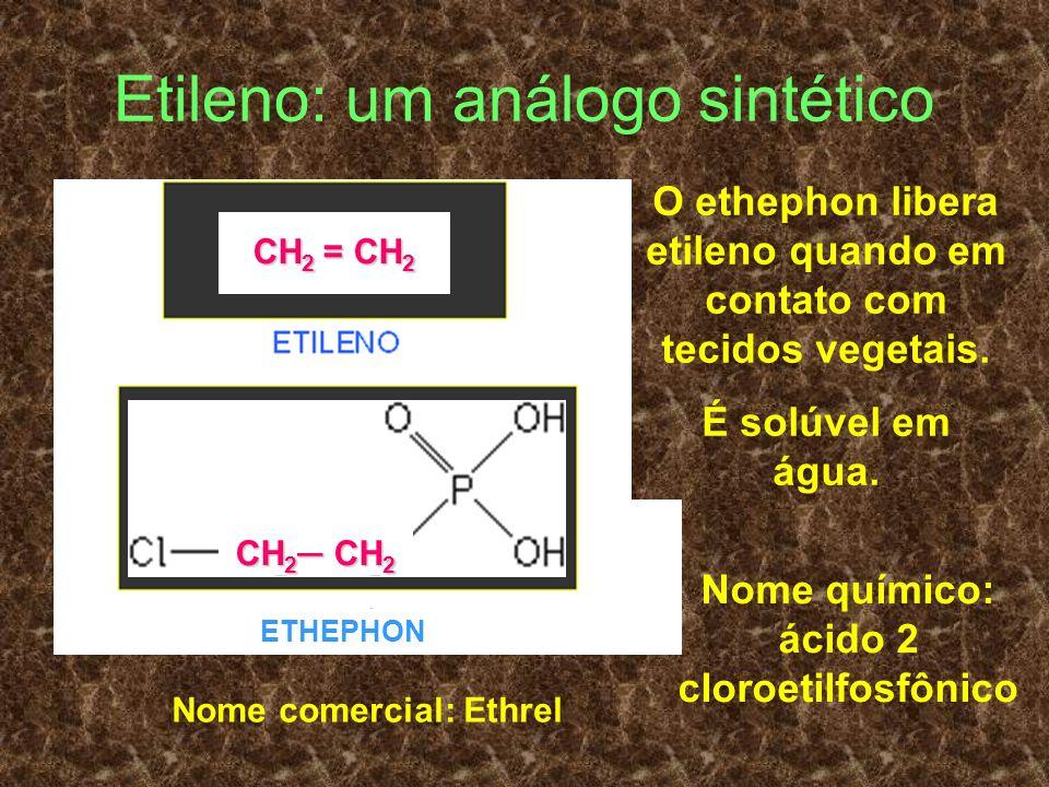 Etileno: um análogo sintético