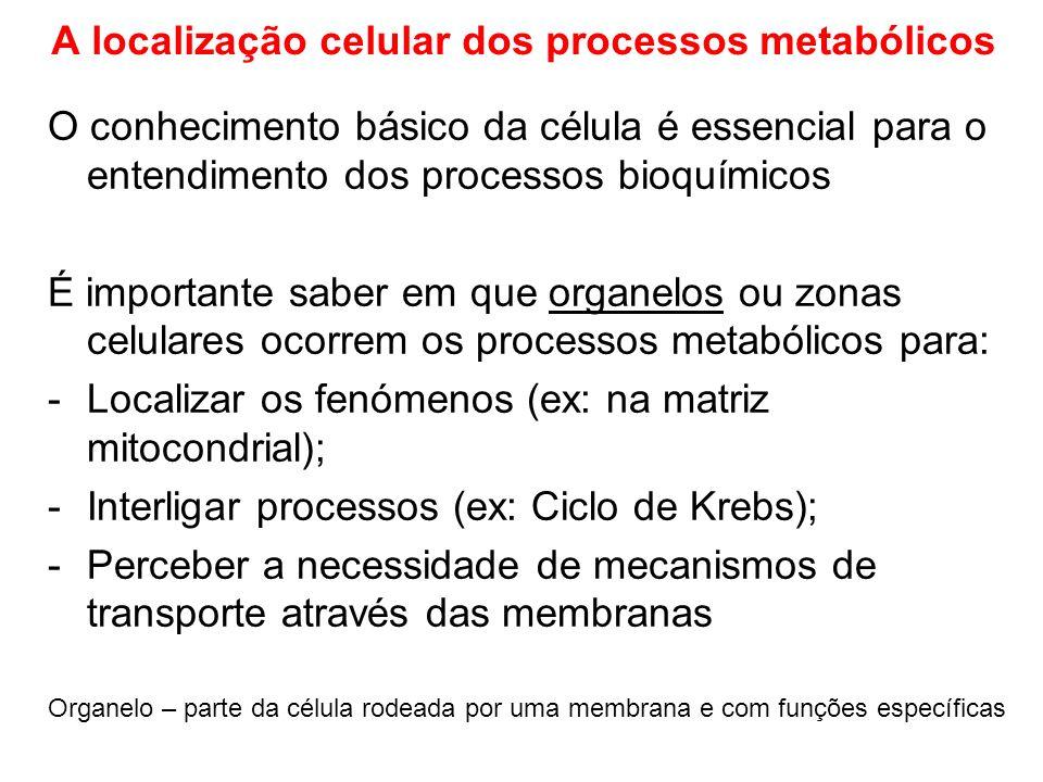A localização celular dos processos metabólicos