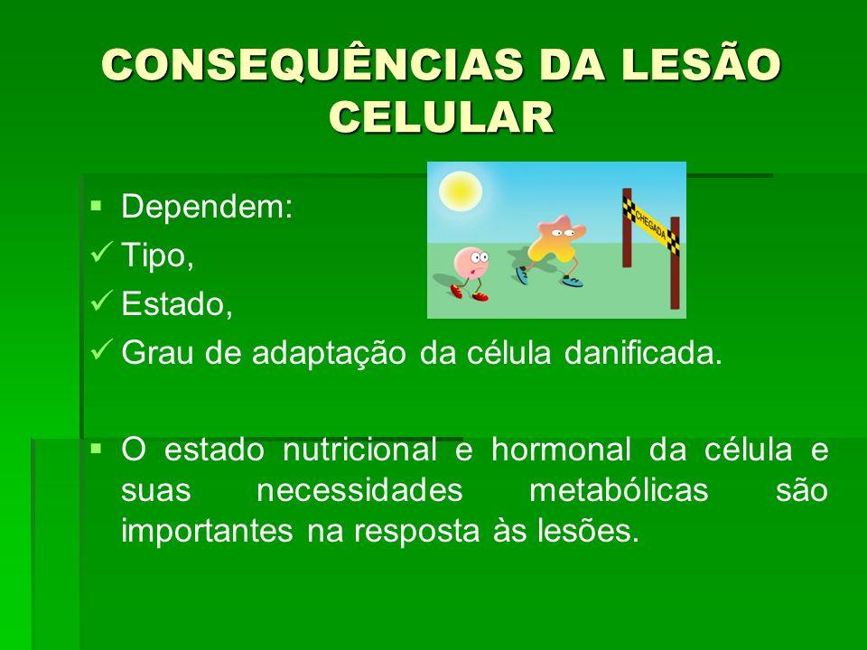CONSEQUÊNCIAS DA LESÃO CELULAR