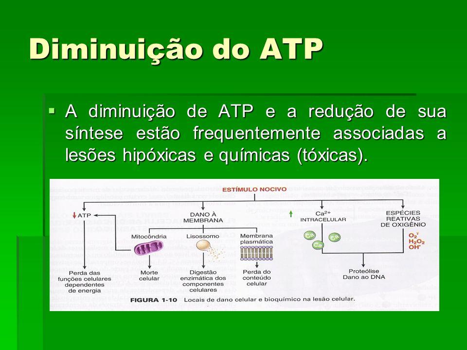 Diminuição do ATP A diminuição de ATP e a redução de sua síntese estão frequentemente associadas a lesões hipóxicas e químicas (tóxicas).
