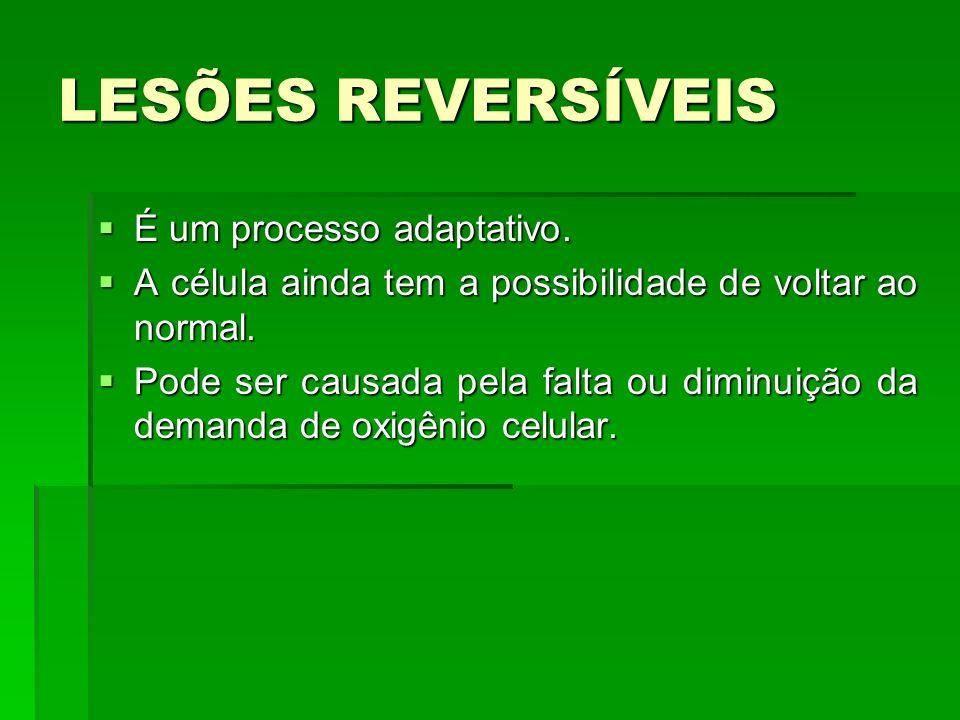 LESÕES REVERSÍVEIS É um processo adaptativo.