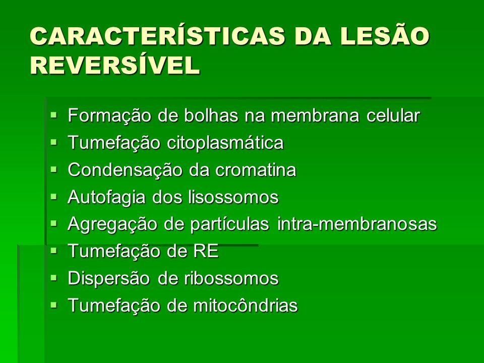 CARACTERÍSTICAS DA LESÃO REVERSÍVEL