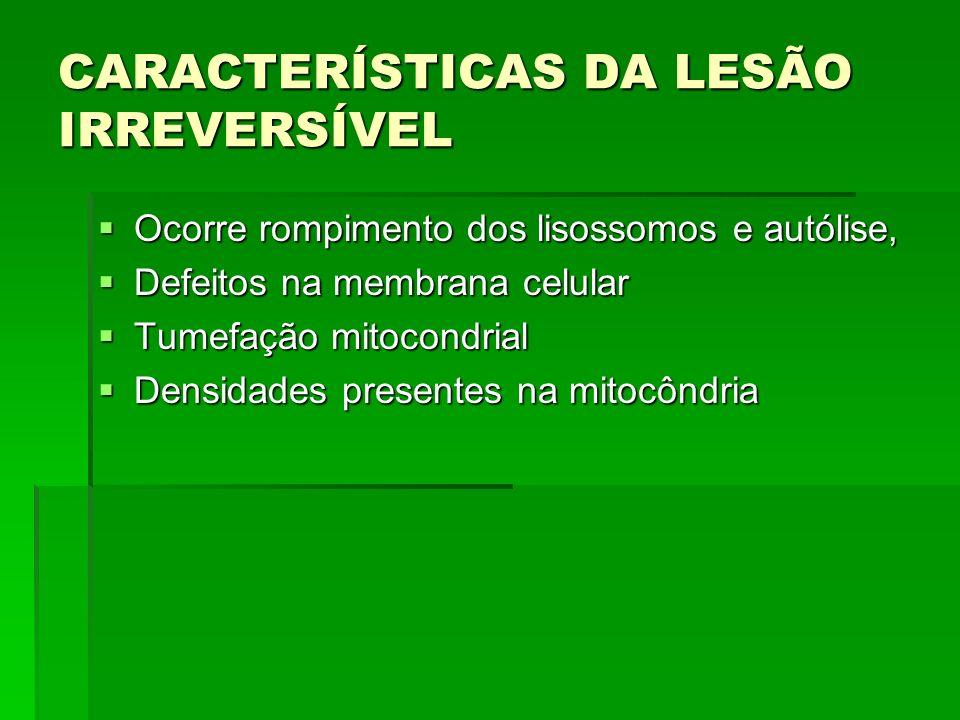 CARACTERÍSTICAS DA LESÃO IRREVERSÍVEL