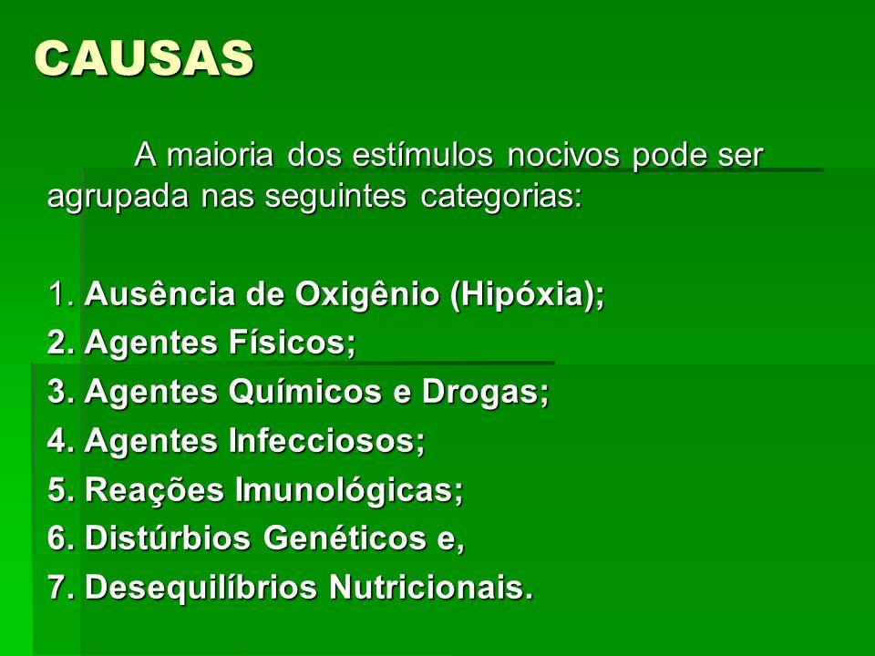 CAUSAS A maioria dos estímulos nocivos pode ser agrupada nas seguintes categorias: 1. Ausência de Oxigênio (Hipóxia);