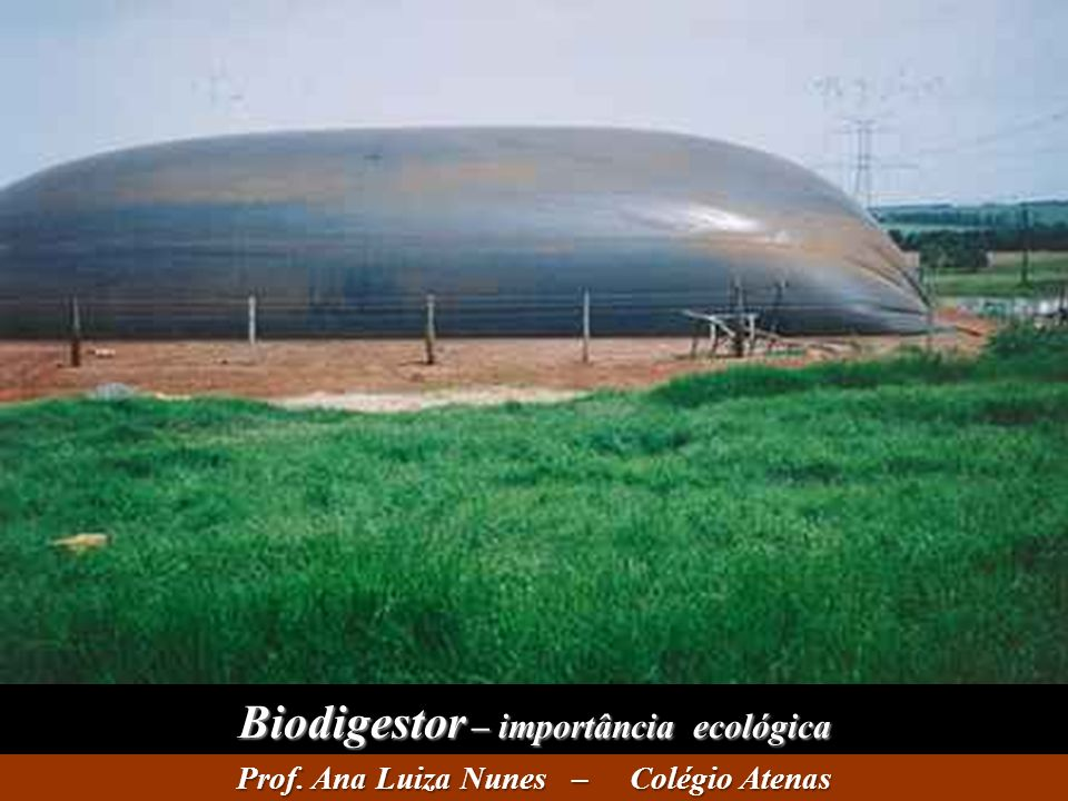 Biodigestor – importância ecológica