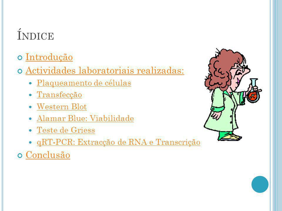 Índice Introdução Actividades laboratoriais realizadas: Conclusão