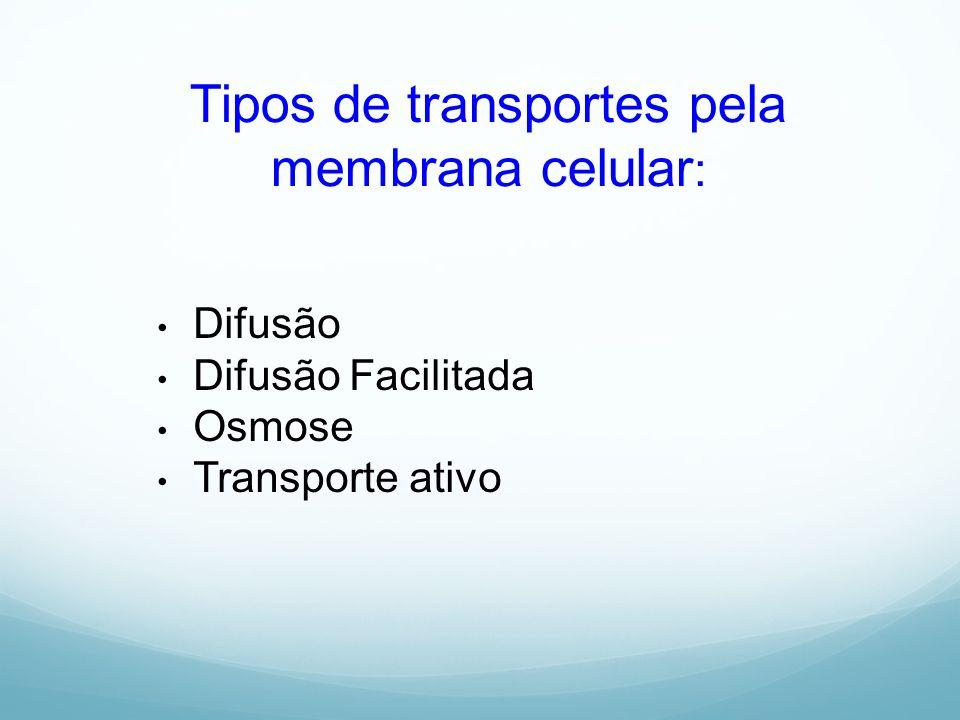 Tipos de transportes pela membrana celular: