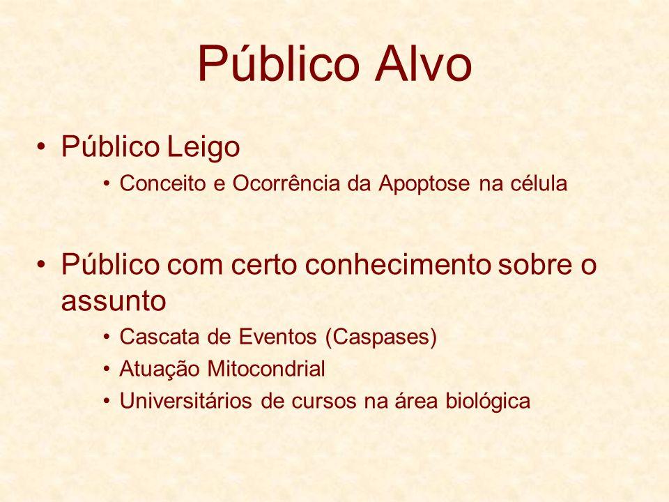 Público Alvo Público Leigo