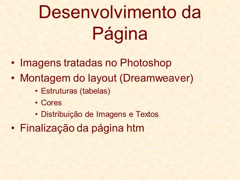 Desenvolvimento da Página