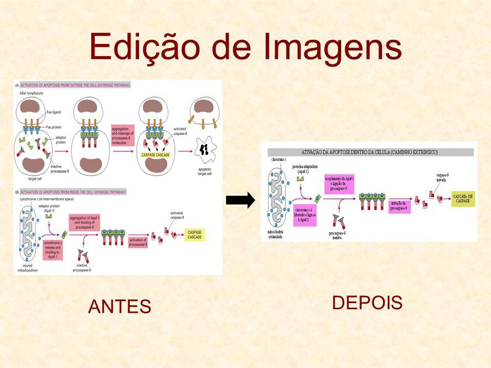 Edição de Imagens DEPOIS ANTES