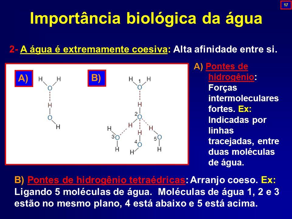 Importância biológica da água