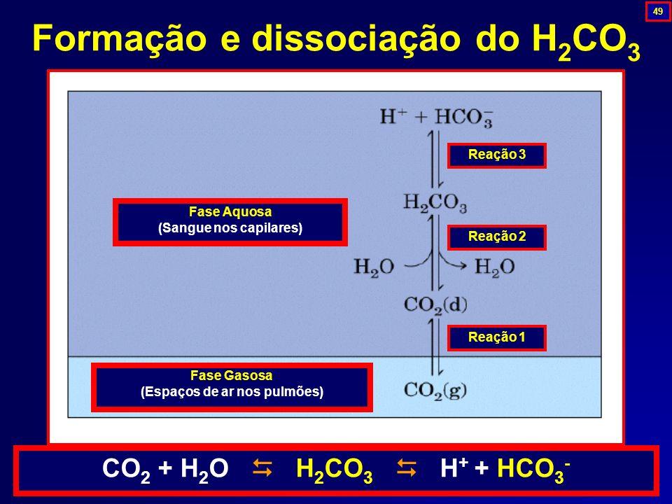 Formação e dissociação do H2CO3