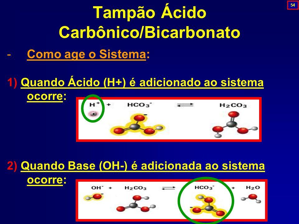 Tampão Ácido Carbônico/Bicarbonato