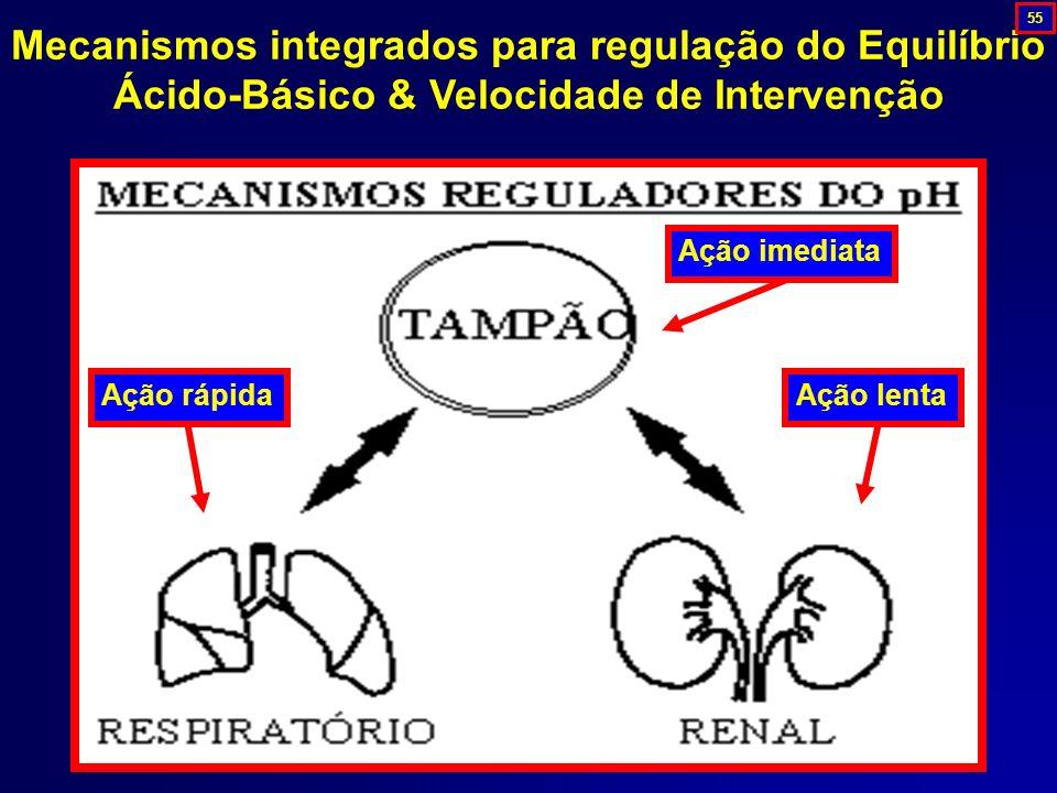 55 Mecanismos integrados para regulação do Equilíbrio Ácido-Básico & Velocidade de Intervenção. Ação rápida.