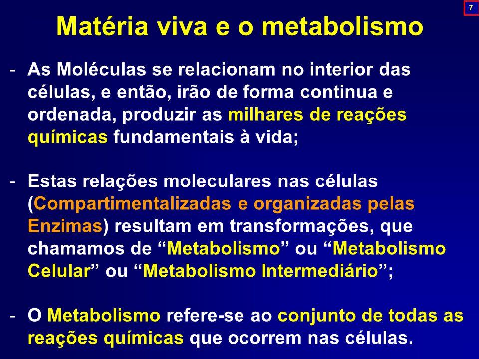 Matéria viva e o metabolismo