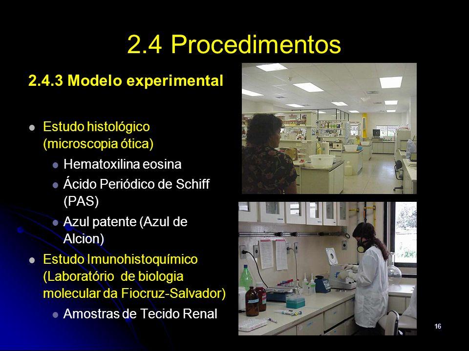 2.4 Procedimentos 2.4.3 Modelo experimental