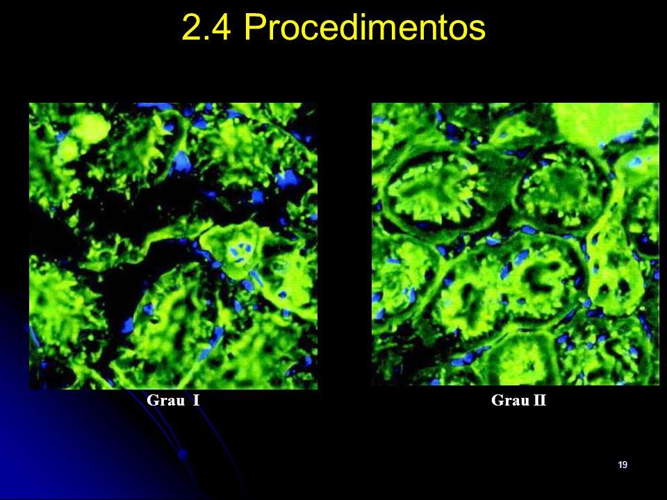 2.4 Procedimentos Grau I Grau II