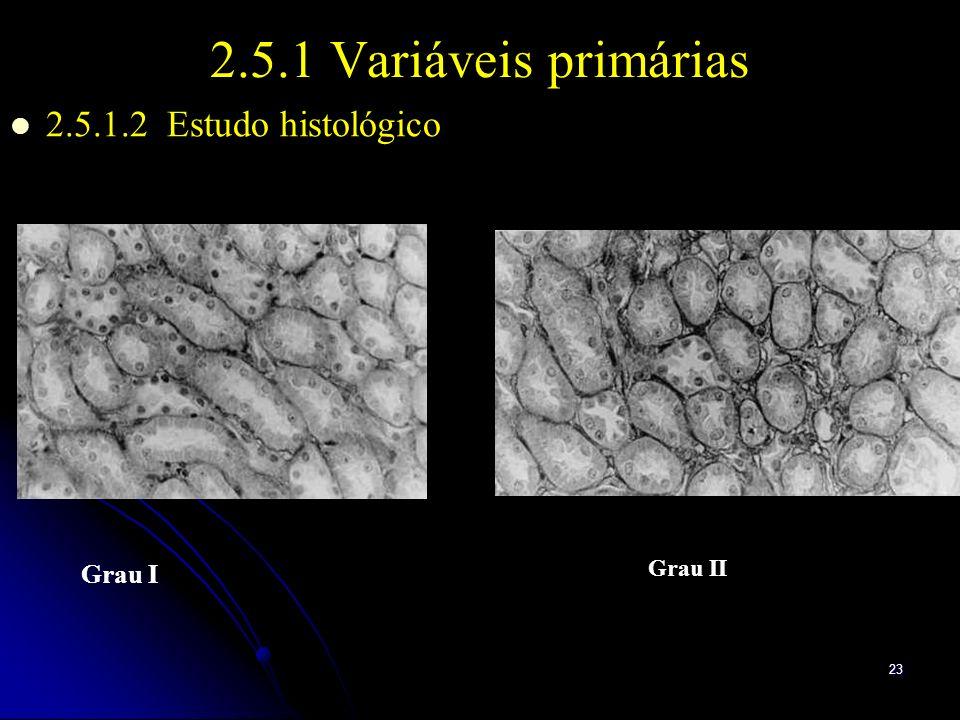 2.5.1 Variáveis primárias 2.5.1.2 Estudo histológico Grau I Grau II