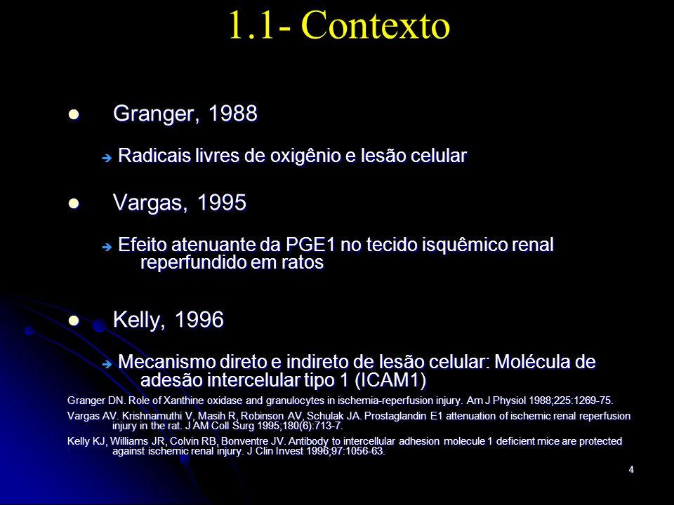 1.1- Contexto Granger, 1988 Vargas, 1995 Kelly, 1996