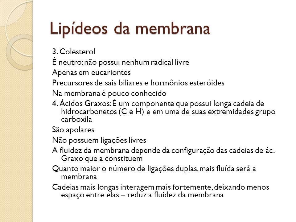 Lipídeos da membrana