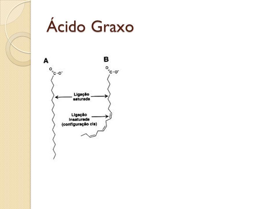 Ácido Graxo