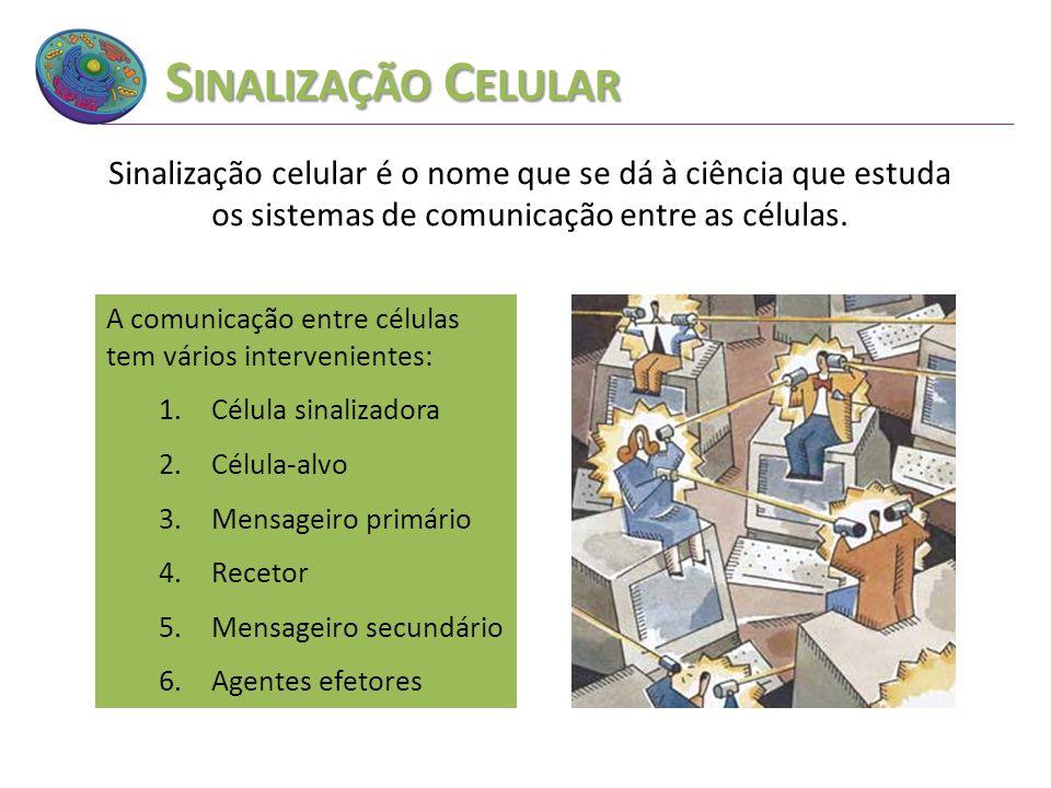 Sinalização Celular Sinalização celular é o nome que se dá à ciência que estuda os sistemas de comunicação entre as células.