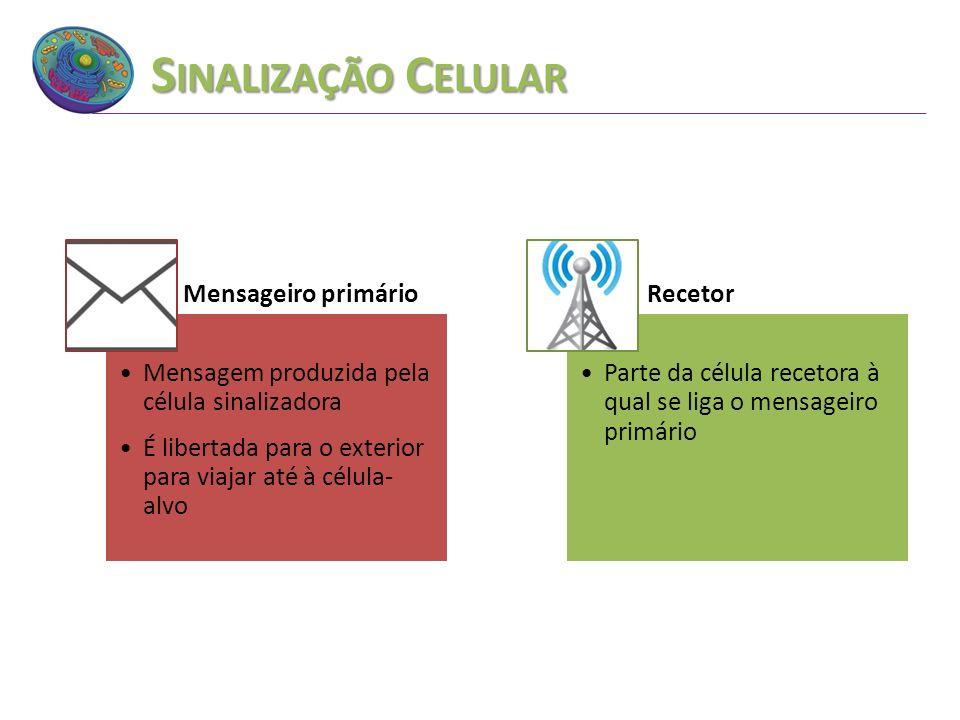 Sinalização Celular Mensageiro primário