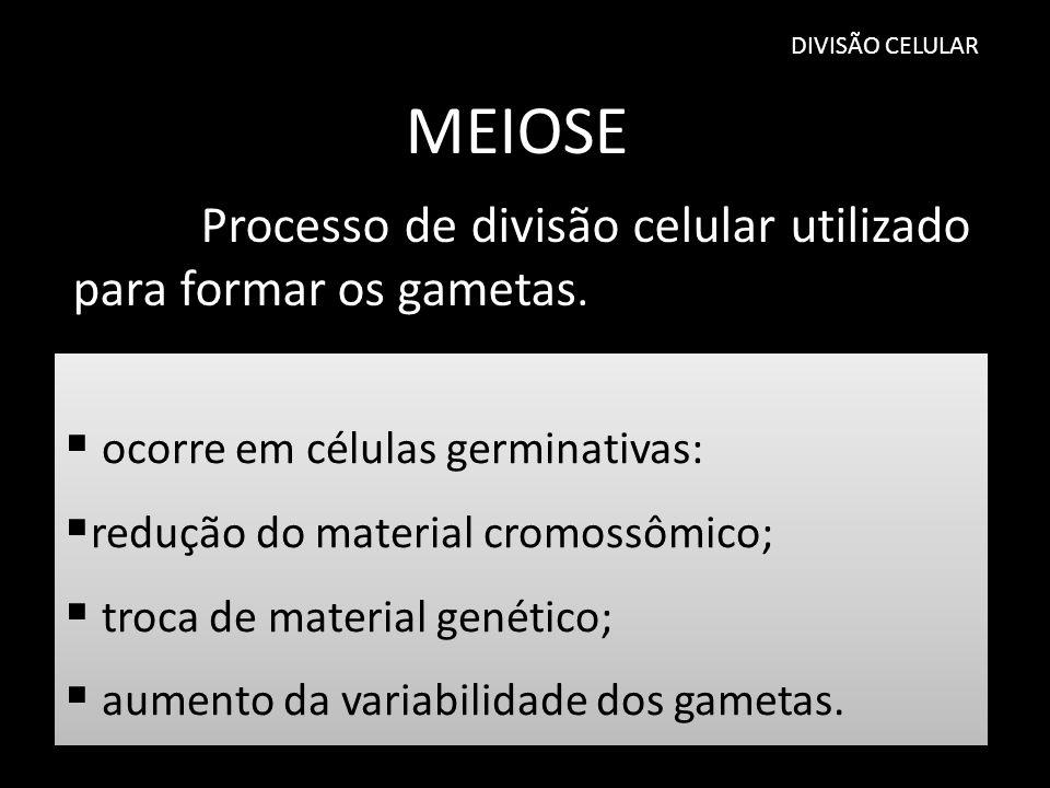 MEIOSE Processo de divisão celular utilizado para formar os gametas.