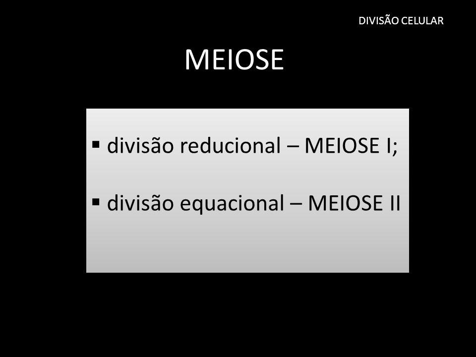 MEIOSE divisão reducional – MEIOSE I; divisão equacional – MEIOSE II