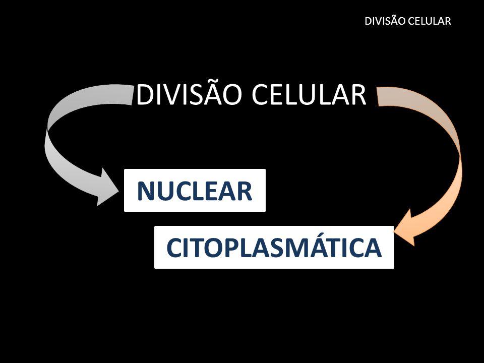 DIVISÃO CELULAR DIVISÃO CELULAR NUCLEAR CITOPLASMÁTICA