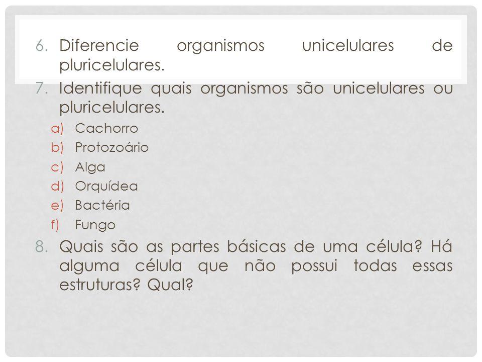Diferencie organismos unicelulares de pluricelulares.