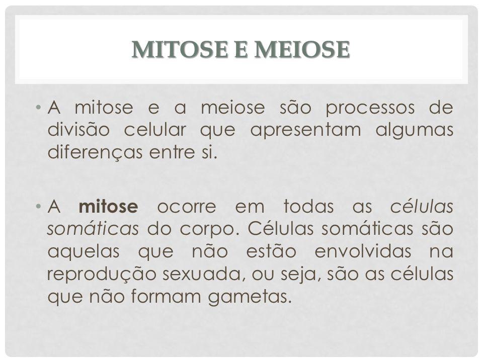 MITOSE E MEIOSE A mitose e a meiose são processos de divisão celular que apresentam algumas diferenças entre si.
