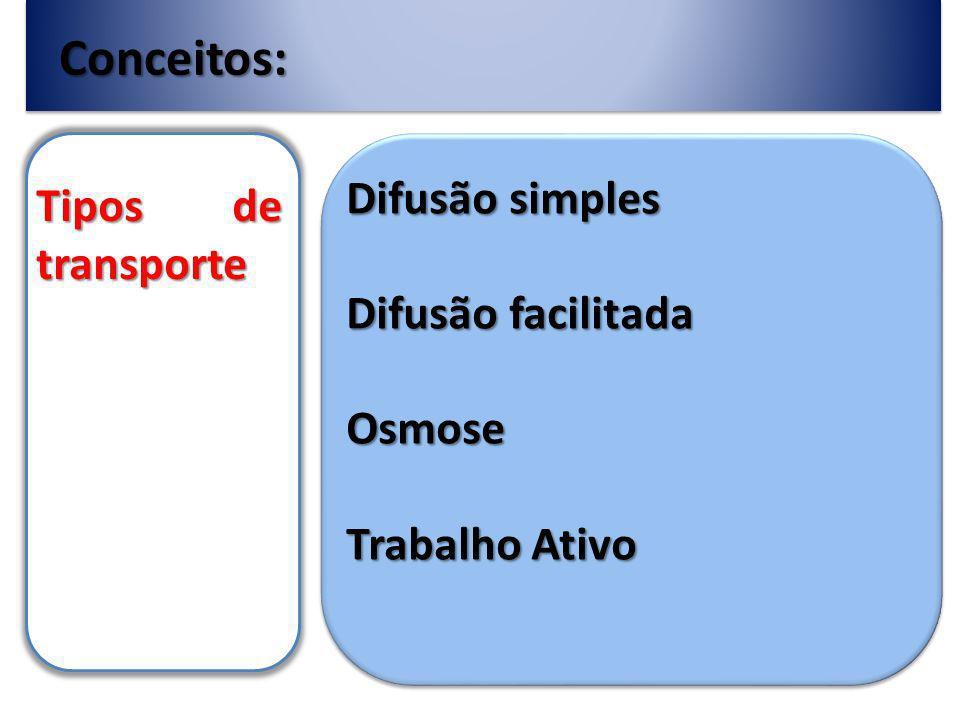 Conceitos: Difusão simples Tipos de transporte Difusão facilitada