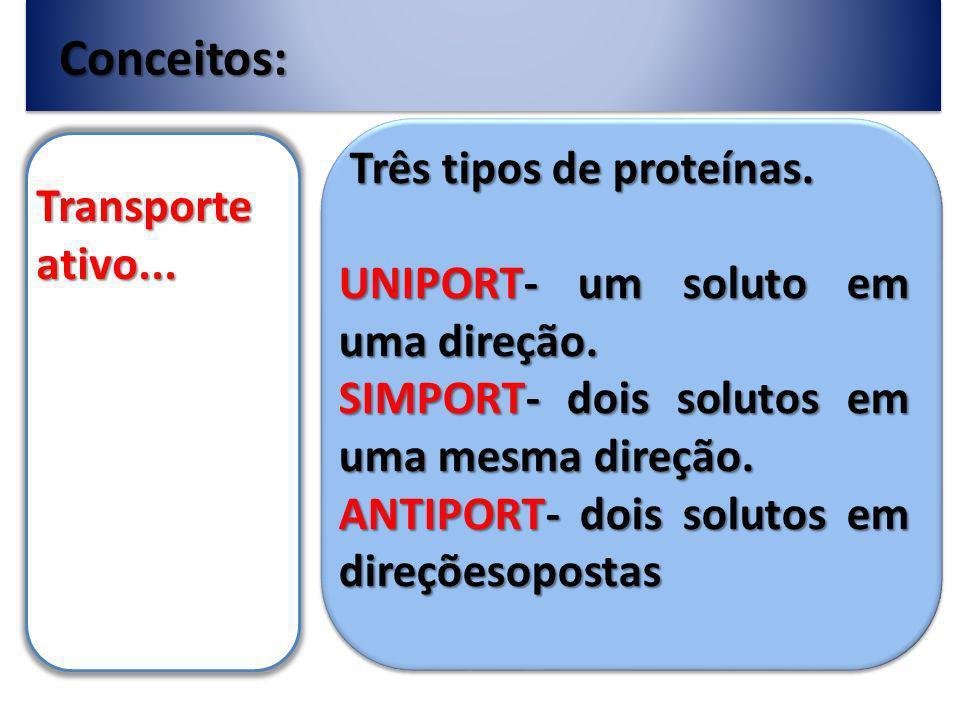 Conceitos: Três tipos de proteínas. Transporte ativo...