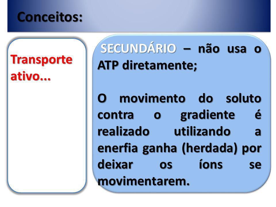 Conceitos: SECUNDÁRIO – não usa o ATP diretamente; Transporte ativo...