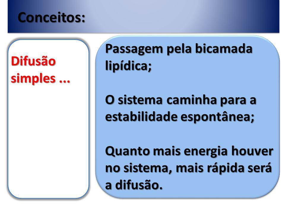 Conceitos: Passagem pela bicamada lipídica; Difusão simples ...