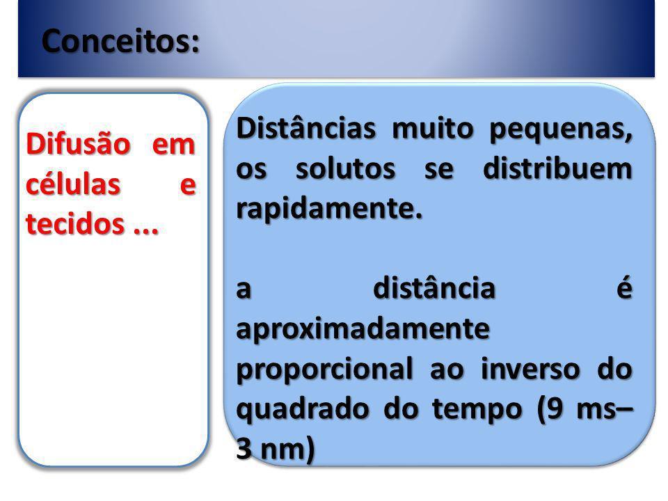 Conceitos: Distâncias muito pequenas, os solutos se distribuem rapidamente.