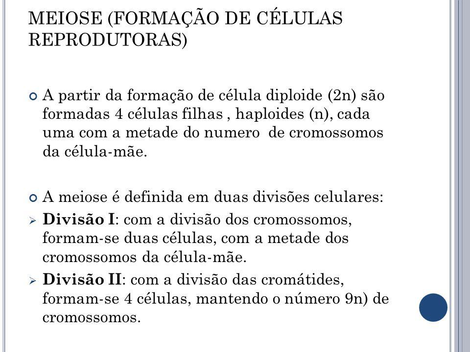 MEIOSE (FORMAÇÃO DE CÉLULAS REPRODUTORAS)