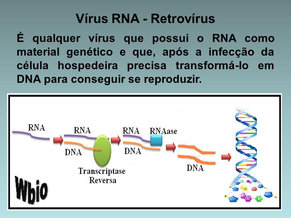 Vírus RNA - Retrovírus