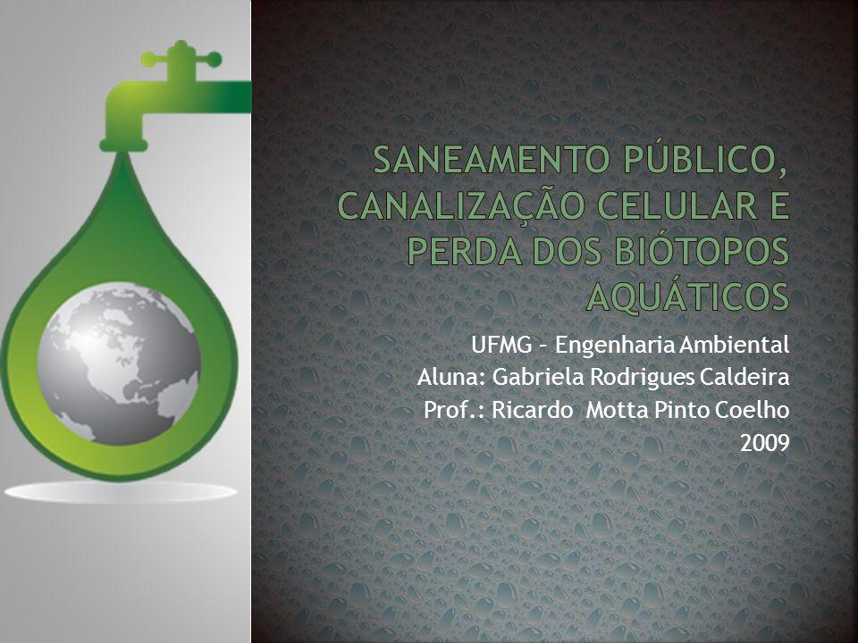 Saneamento público, canalização celular e perda dos biótopos aquáticos