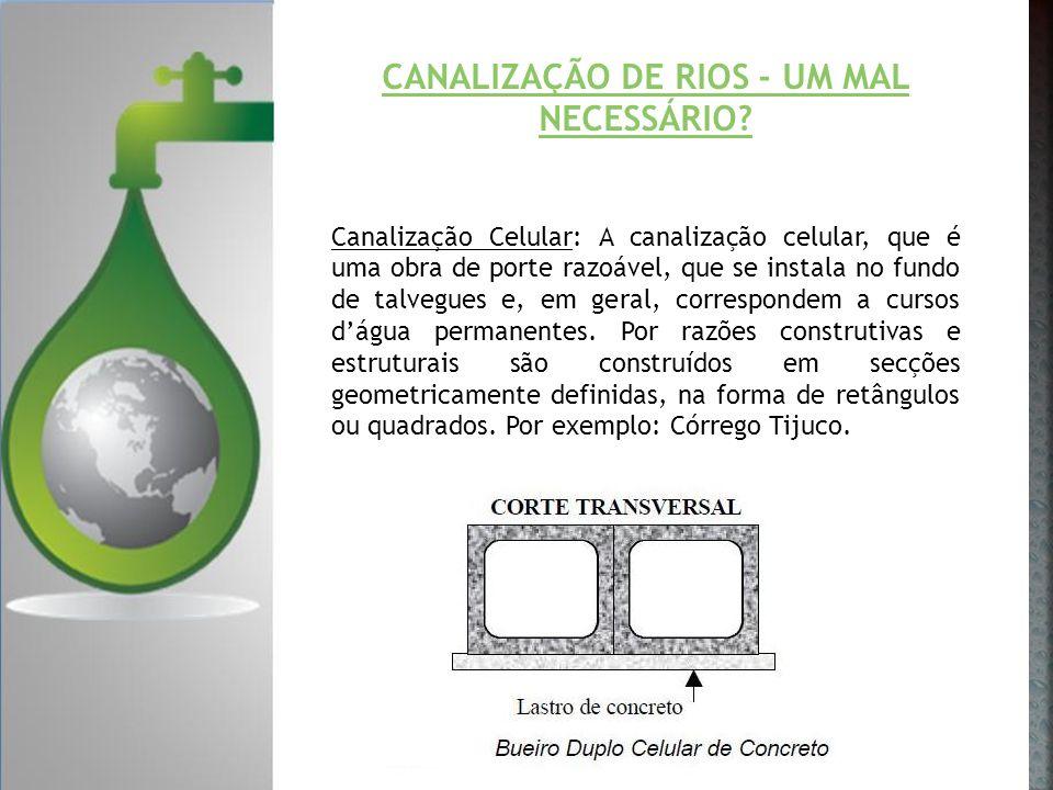 CANALIZAÇÃO DE RIOS - UM MAL NECESSÁRIO