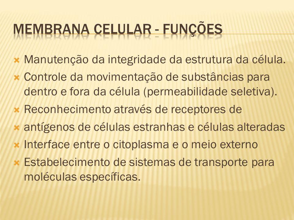 Membrana Celular - funções