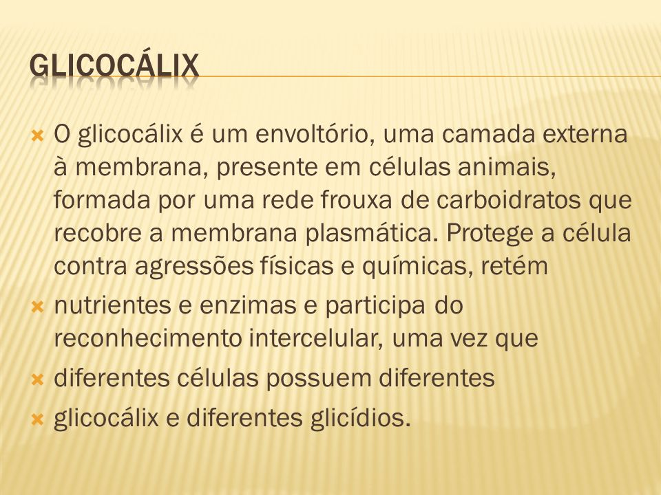 GLICOCÁLIX