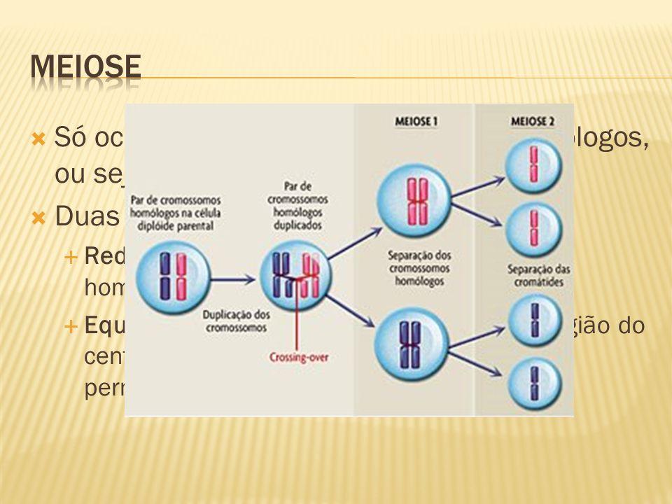 meiose Só ocorre em células com pares de homólogos, ou seja, diploides; Duas divisões: Reducional: separação dos cromossomos homólogos;