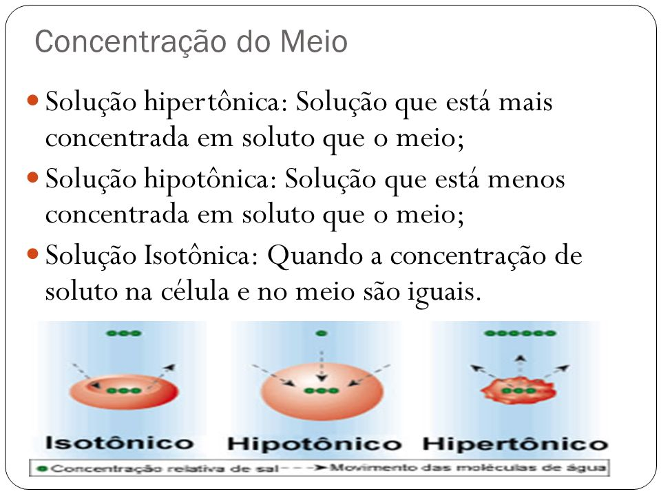 Concentração do Meio Solução hipertônica: Solução que está mais concentrada em soluto que o meio;