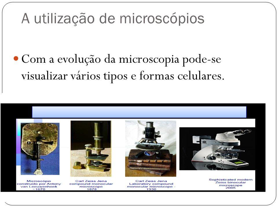 A utilização de microscópios