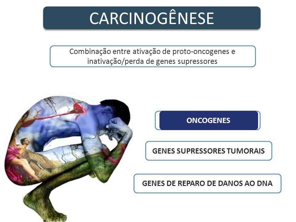 GENES SUPRESSORES TUMORAIS GENES DE REPARO DE DANOS AO DNA