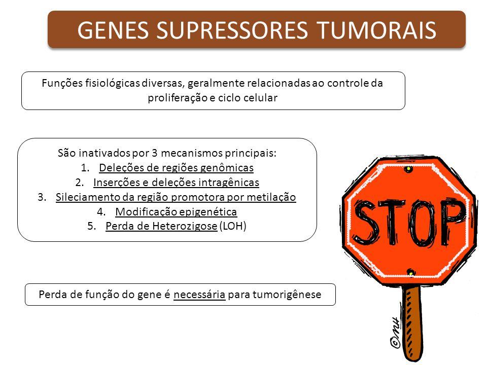 GENES SUPRESSORES TUMORAIS